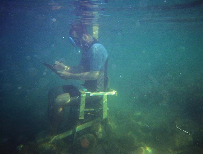 Desen subacvatic într-un acvariu imens la 18+ festival