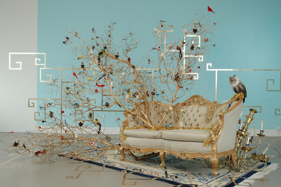 Website Builder Made With Color Presents: The Installation And Sculptures Of Alexis Zoto