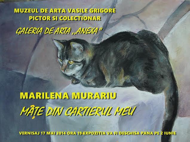 """Marilena Murariu """"Mâţe din cartierul meu"""" @ Muzeul de artă Vasile Grigore, București"""