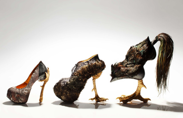 """Bird-Witched"", A Fantastic Collection of Bird-Themed Stiletto Heel Shoes Designed By Masaya Kushino"