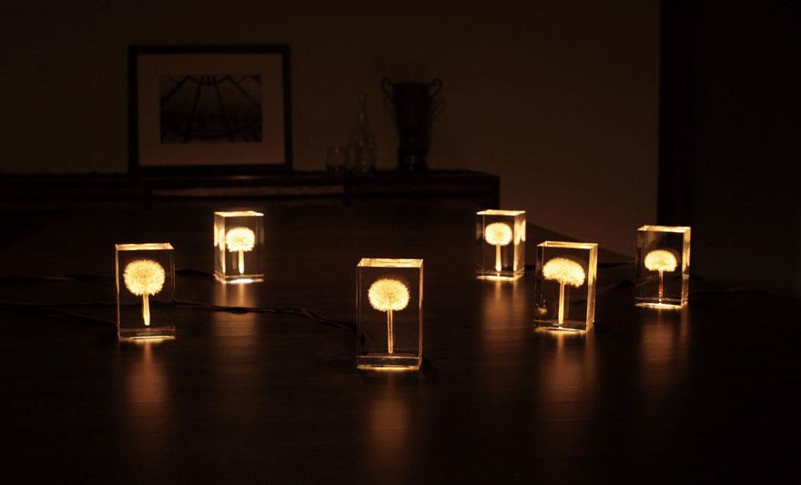 oled-dandelion-lights-takao-inoue-2