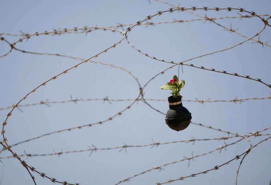 tear-gas-flower-pots-palestine-3