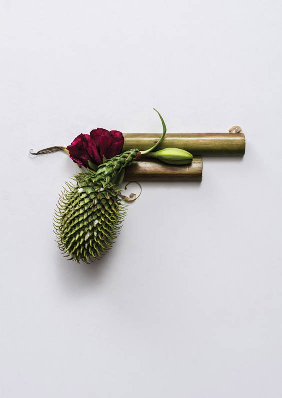Sonia Rentsch's Still Life Portraits Of Organic Weaponry