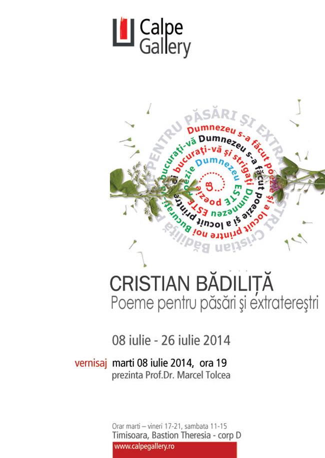 Cristian Bădiliţă – Poeme pentru păsări şi extratereştri @ Calpe Gallery, Timișoara