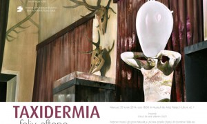 Felix Aftene Taxidermia (6)