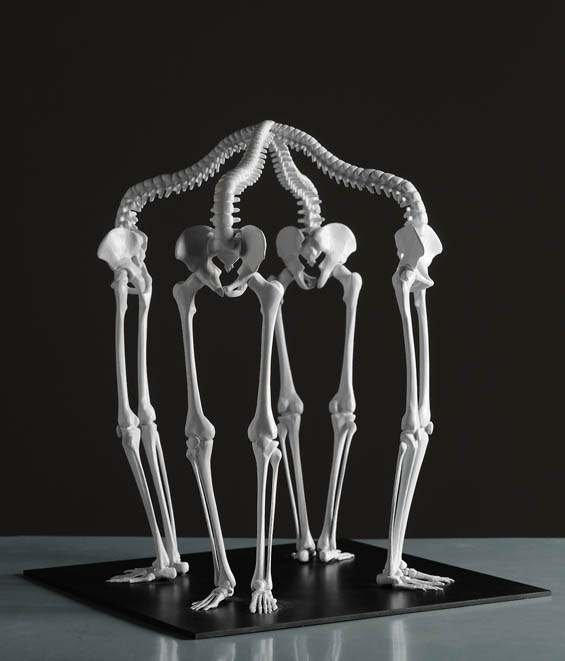 Monika Horčicová's Cyclical 3D-Printed Skeletal Sculptures Pair Mortality And Infinity