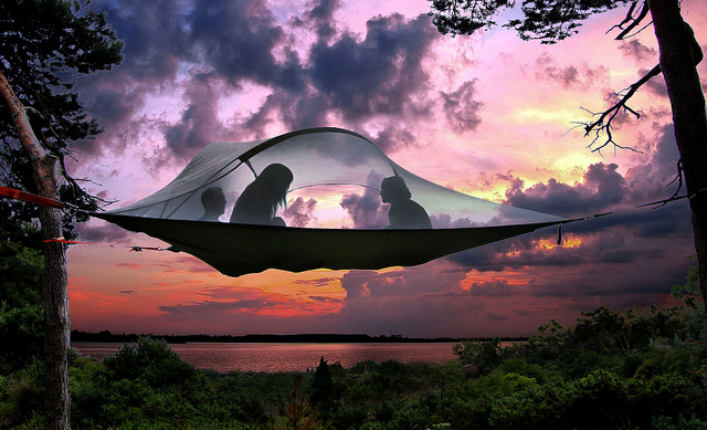 Tentsile Tree Tents, Tents That Tie to Trees for a Suspended Camping Experience in Spots Without Flat Ground