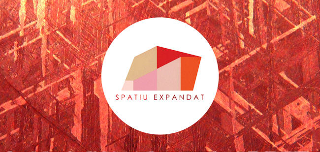 Apel de proiecte Spațiu expandat 2014