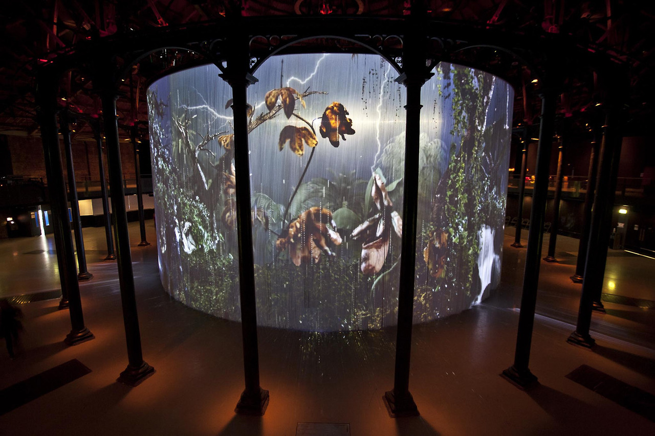 Mat Collishaw: still sensational