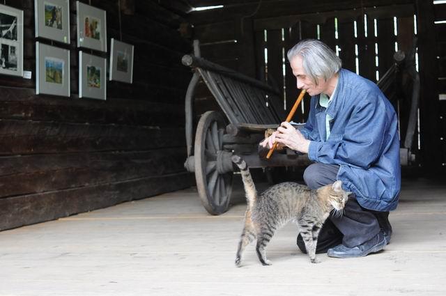 Concert de fluier pentru pisica