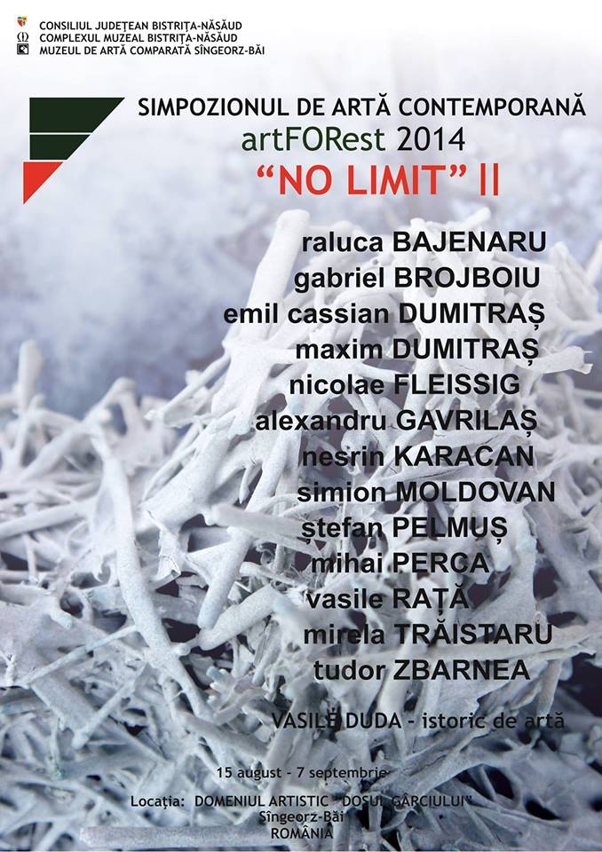 Simpozionul internațional de artă contemporană artFORest ,,NO LIMIT'' ll, 2014, ediția 25