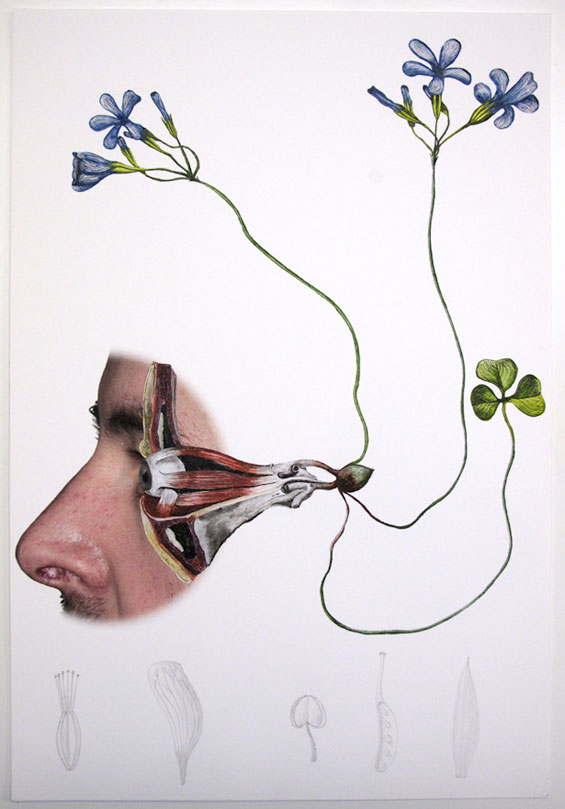 Laurent Millet's Collages Evoke Life And Death By Interweaving Man And Nature