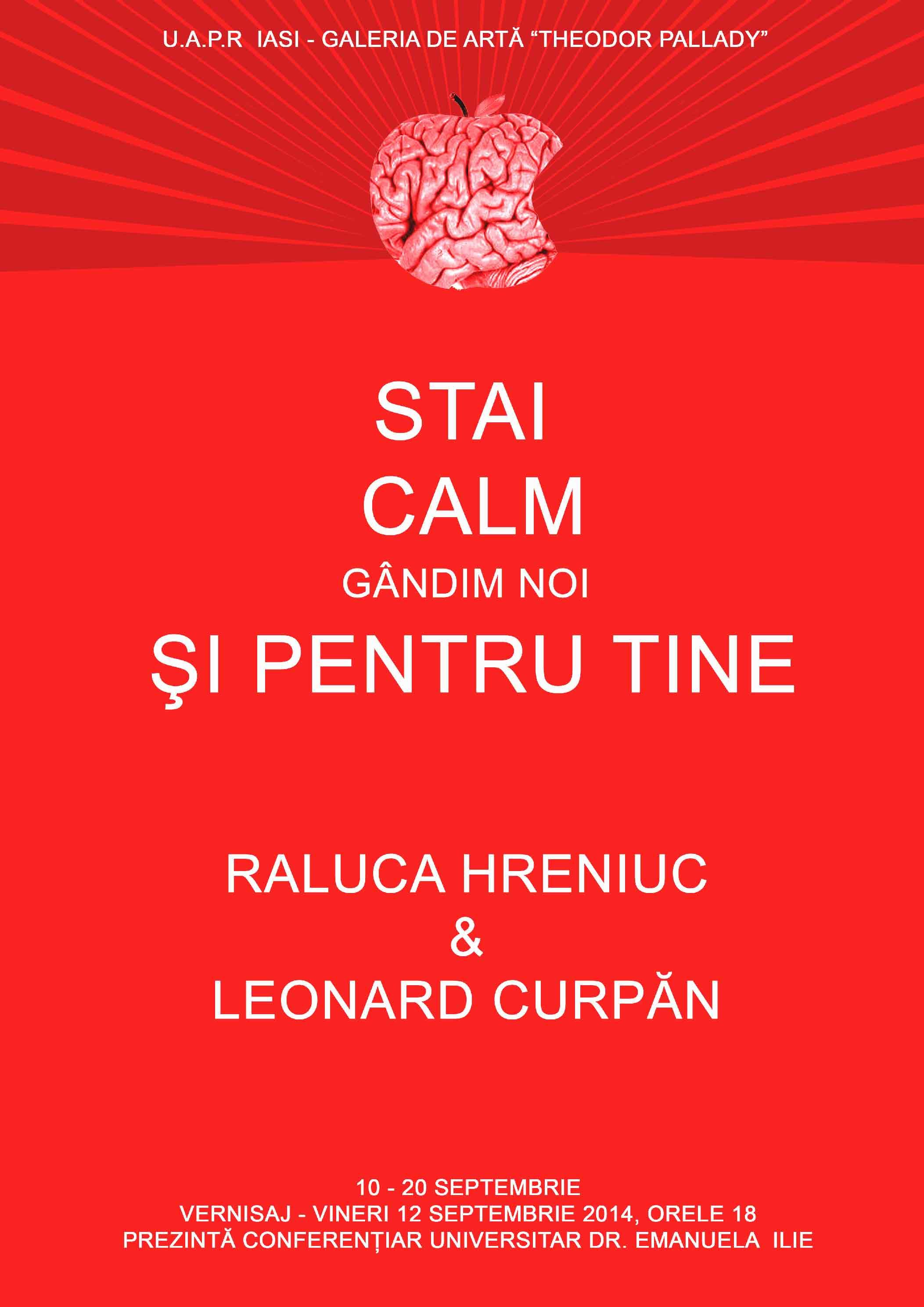 """Raluca Hreniuc şi Leonard Curpăn """"Stai calm, gândim noi şi pentru tine"""" @ Galeria de artă """"Theodor Pallady"""", Iași"""