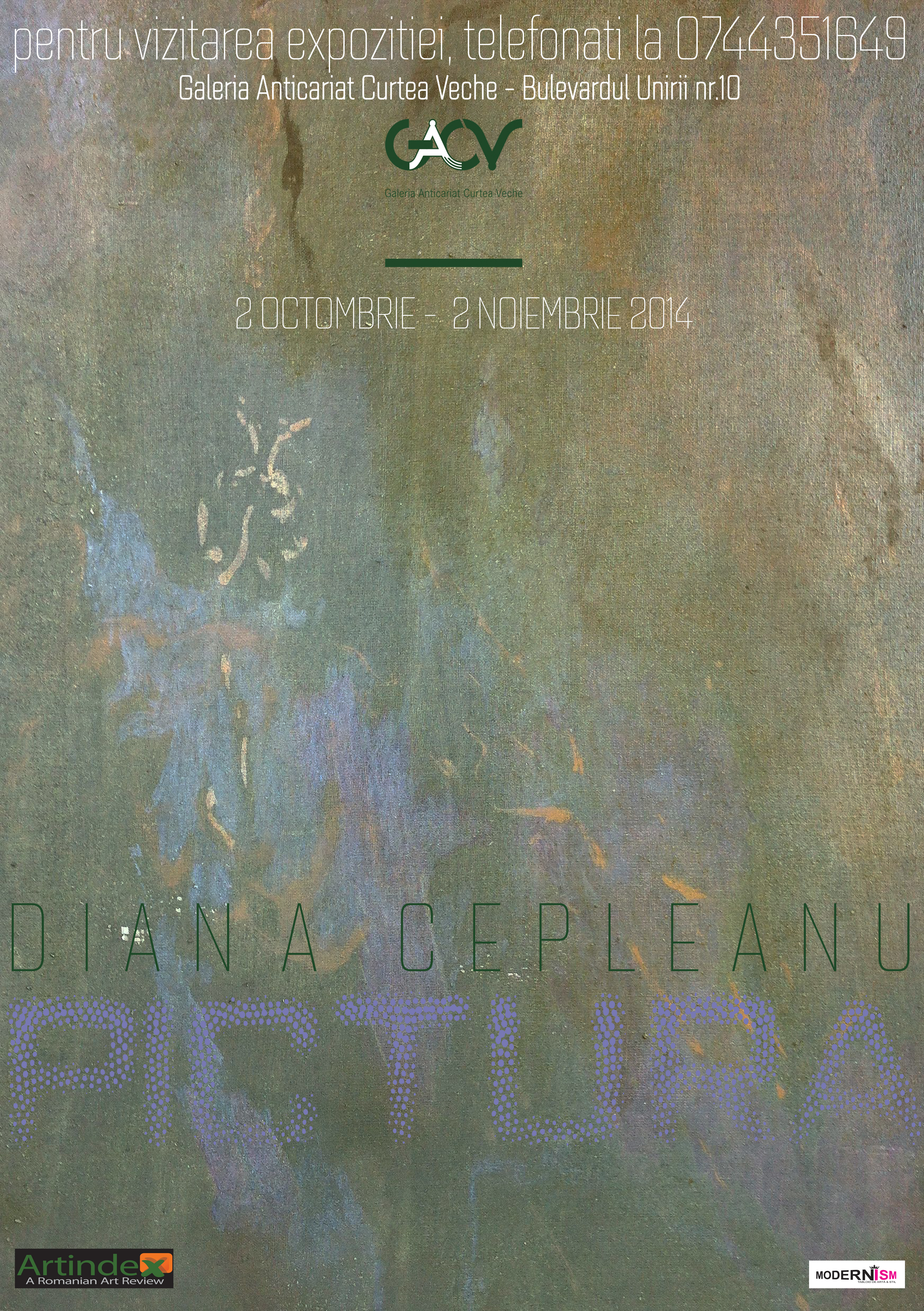 Diana Cepleanu @ Galeria Anticariat Curtea Veche, București