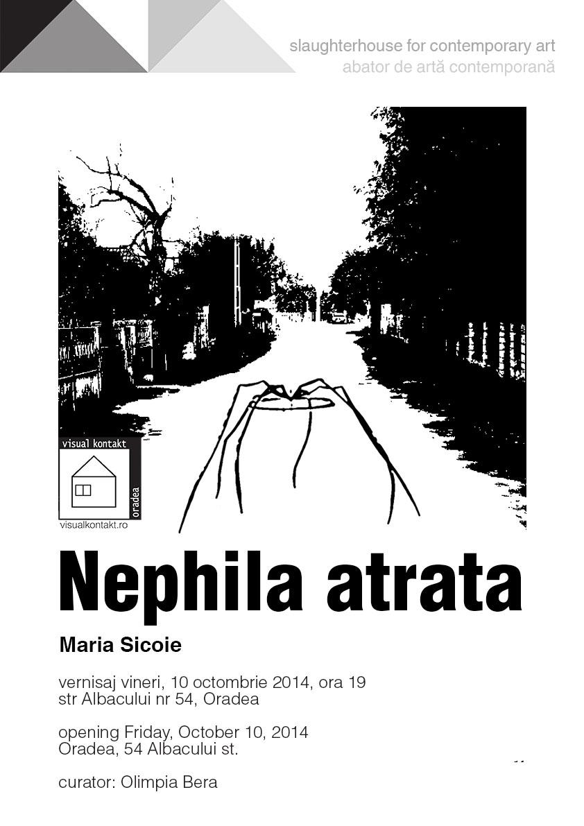 """Maria Sicoie """"Nephila atrata"""" @ Galeria Visual Kontakt, Oradea"""