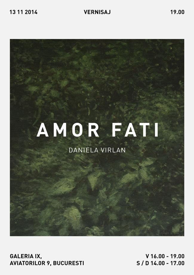 "Daniela Vîrlan ""Amor Fati"" @ Galeria IX, Bucureşti"