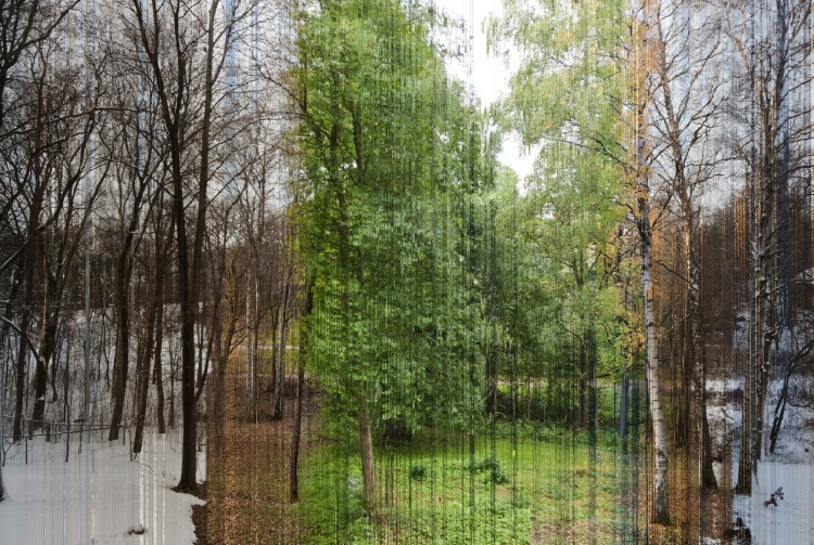 Norwegian Photographer Captures Four Seasons in a Single Image Using 3,888 Photos Shot Over the Course of a Year