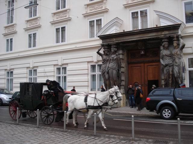 Resize of 19 Plimbare turistica cu trasura prin centrul Ring-ului vienez
