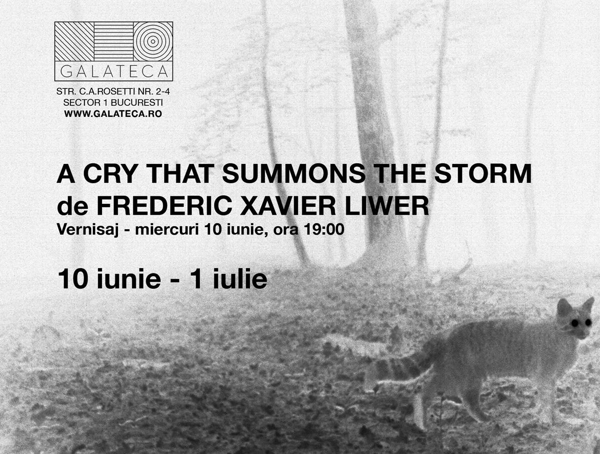 """Frédéric Xavier Liwer """"Un strigăt ce invocă furtuna"""" @ Galeria Galateca, București"""