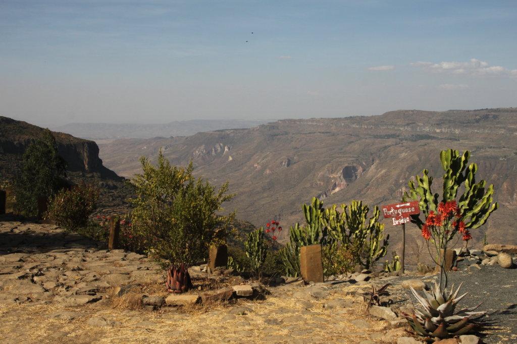 aurel tar - etiopia _06