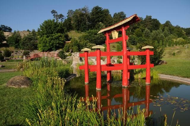 gradina botanica jibou - foto lucian muntean _0024