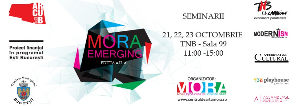 Invitație la seminarii pentru artiști vizuali @ Programul Mora Emerging