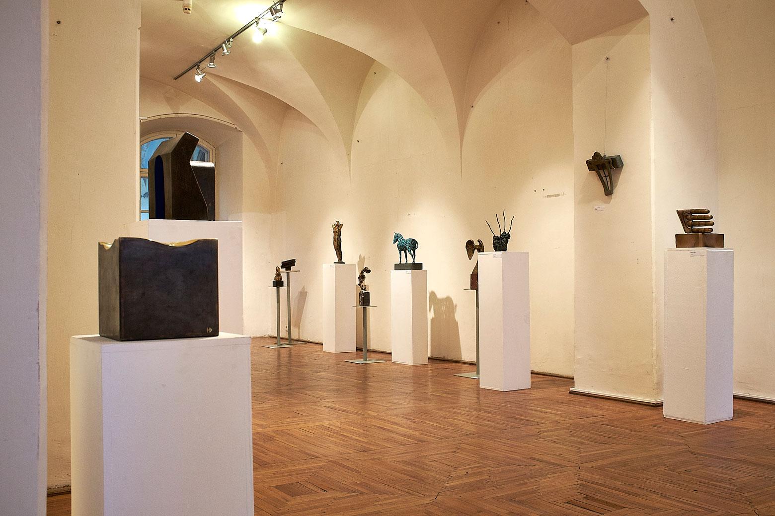 Vârsta de Bronz Muzeul de Arta din Cluj (6)