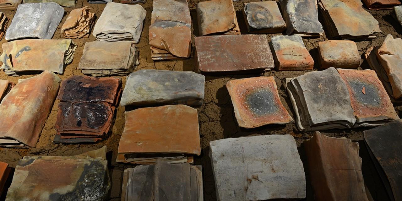 Vlad Basarab – Arheologia Memoriei: Cartile Pamantului