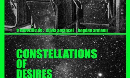 """Silvia Amancei, Bogdan Armanu """"Constelații de Dorințe"""" @ Galeria apARTe, Iași"""