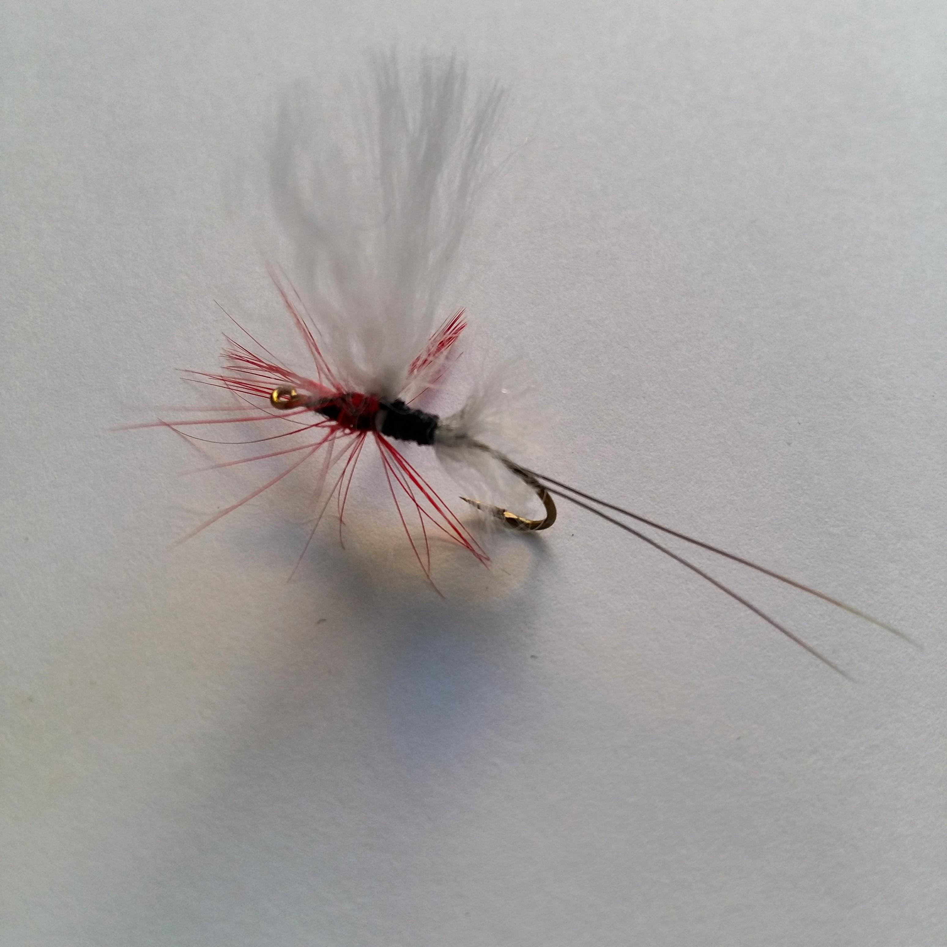 flyfishing LM 12