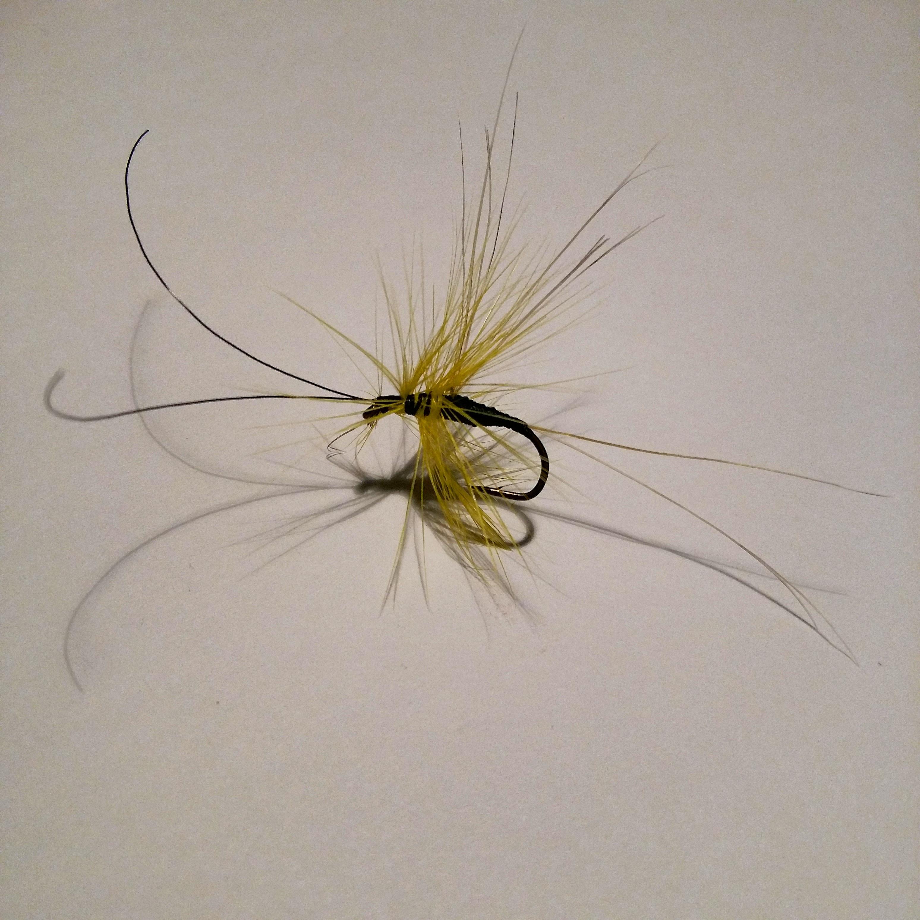 flyfishing LM 17