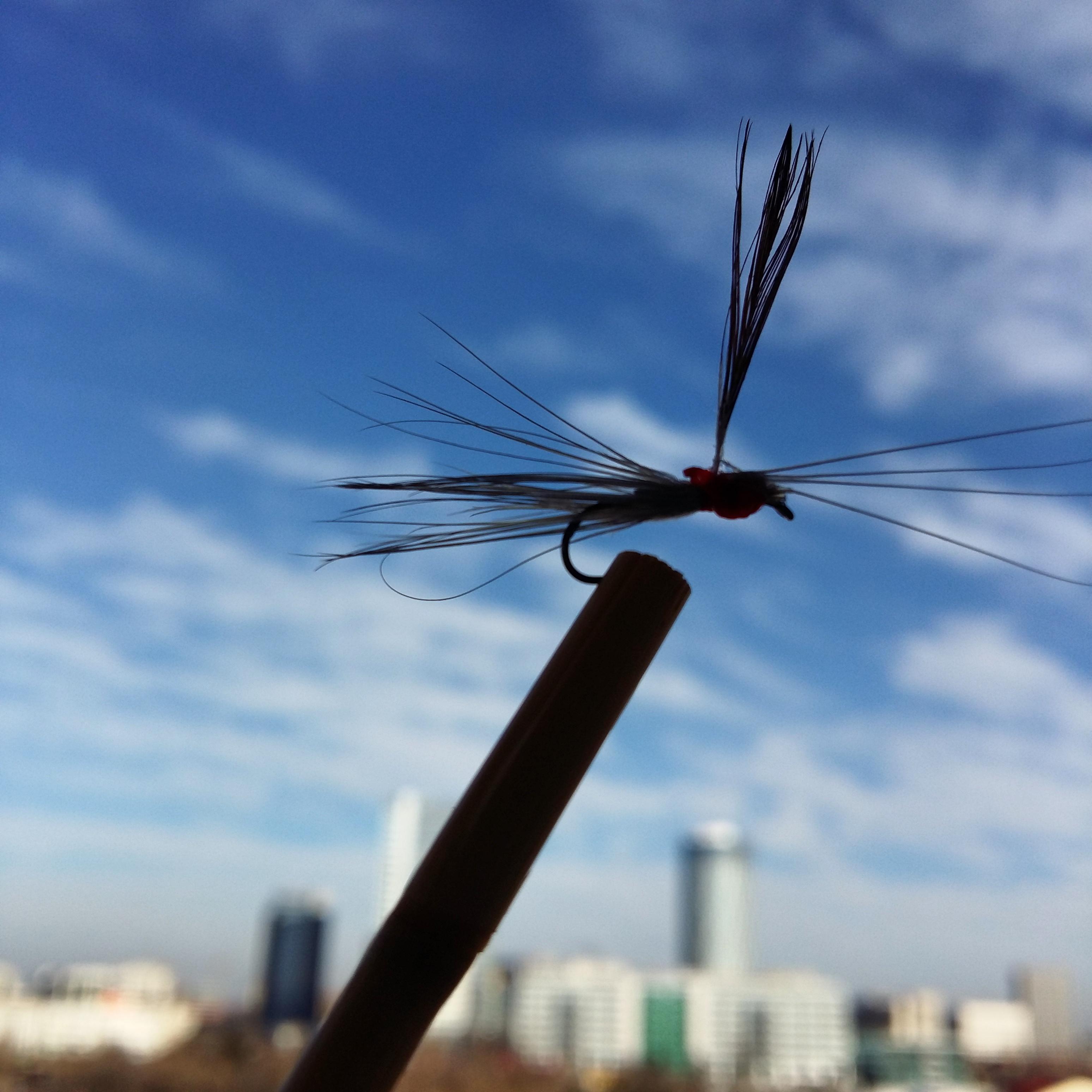 flyfishing LM 22