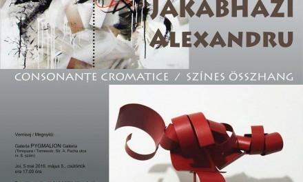 "Endre Farkas și Alexandru Jakabhazi ""Consonanțe cromatice"" @ Galeria Pygmalion, Timișoara"
