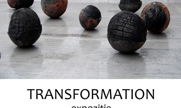 "Danica Bićanić, ""Transformation"" @ Calpe Gallery, Timișoara"