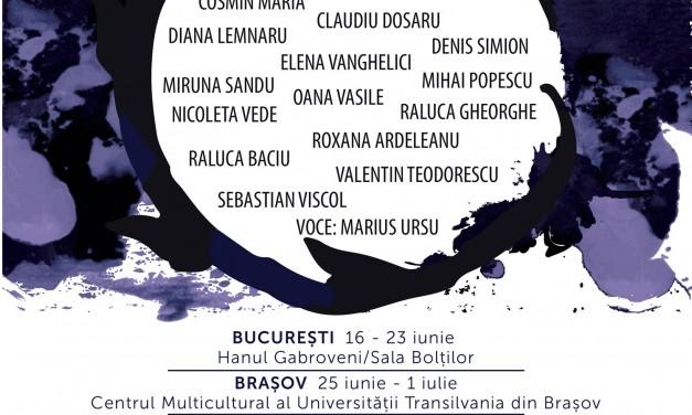 Circuit, instalații site-specific în București, Brașov, Sibiu, Cluj-Napoca, Timișoara