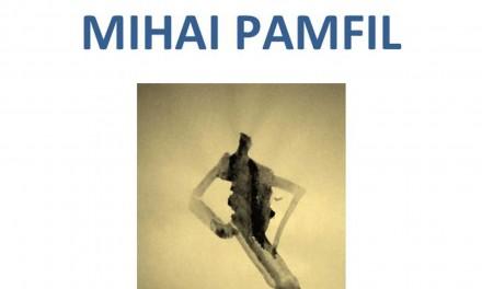 Expoziție Mihai Pamfil @ Muzeul Unirii Iași