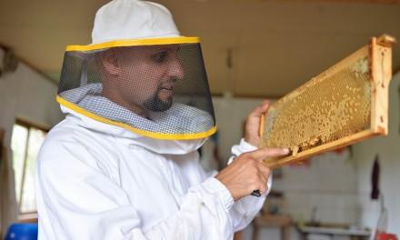 Dragos Neagoe – o poveste despre arta, apicultura si viata