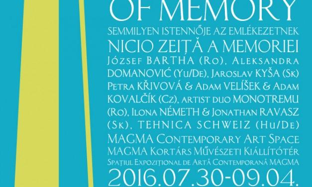 NO GODDESS OF MEMORY @ MAGMA Contemporary Art Space, Sf. Gheorghe