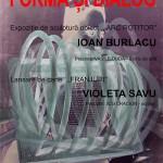Formă și Dialog la Muzeul de Artă Comparată din Sângeorz-Băi