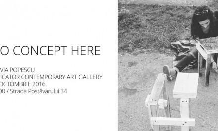 "Flavia Popescu ""No concept here"" @ Indicator Contemporary Art Gallery, Braşov"