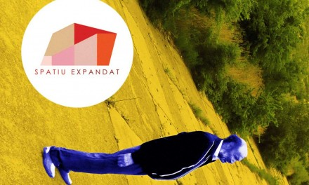 SPAȚIU EXPANDAT 2016 / ZONA GRI