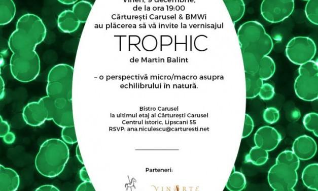 Instalația TROPHIC de Martin Balint @ Cărturești Carusel, București