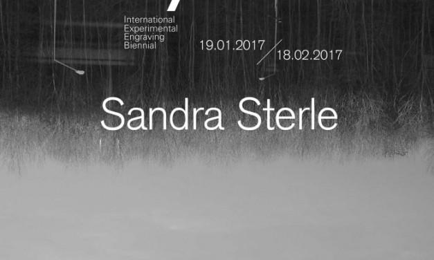 IEEB7 prezintă instalația video a artistei Sandra Sterle @ WASP, București