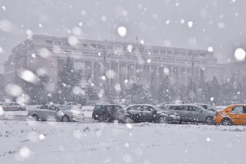 resize-of-iarna-in-bucuresti-foto-lucian-muntean-lm_2974