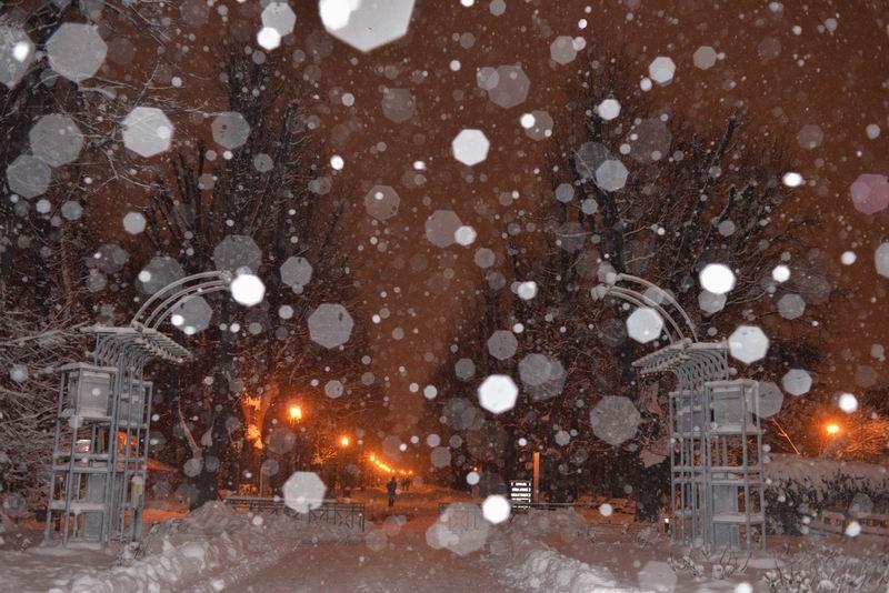 resize-of-iarna-in-bucuresti-foto-lucian-muntean-lm_2990
