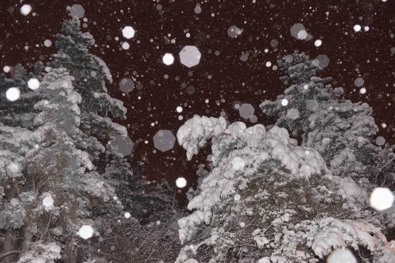 resize-of-iarna-in-bucuresti-foto-lucian-muntean-lm_2996