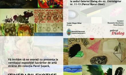 PERSPECTIVE NECONVENŢIONALE CU PAVEL ŞUŞARĂ @ Galeria Dialog