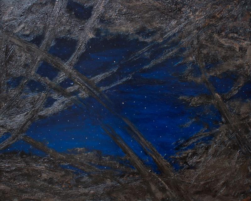 Dragoș Bădiță, Night Swamp, 40 x 50 cm, ulei pe lemn, 2016