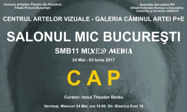 SALONUL MIC BUCUREŞTI – Ediţia a XI-a, 2017 – CAP
