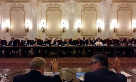 Audierea candidaților la conducrera ICR în Senat